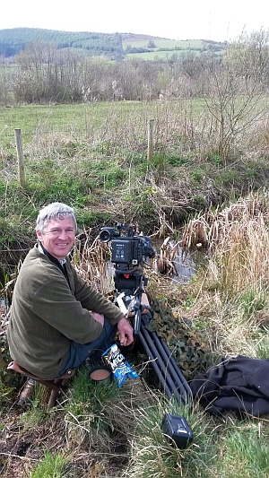 Filming water voles
